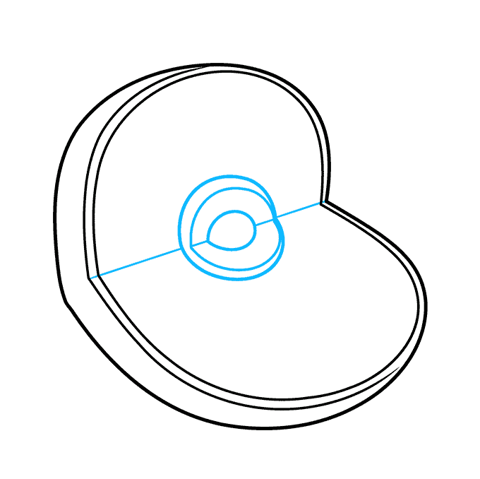 How to Draw an Animal Cell Step 02