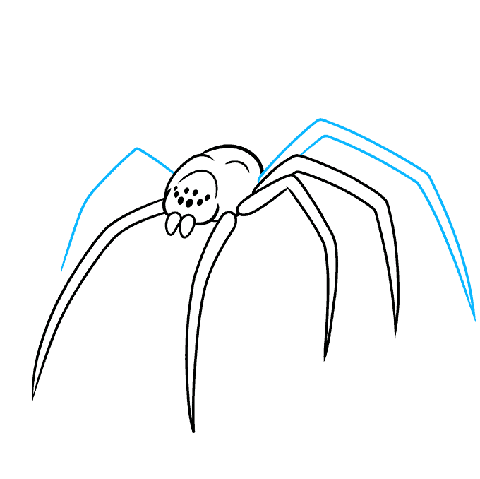 How to Draw a Black Widow Spider Step 06