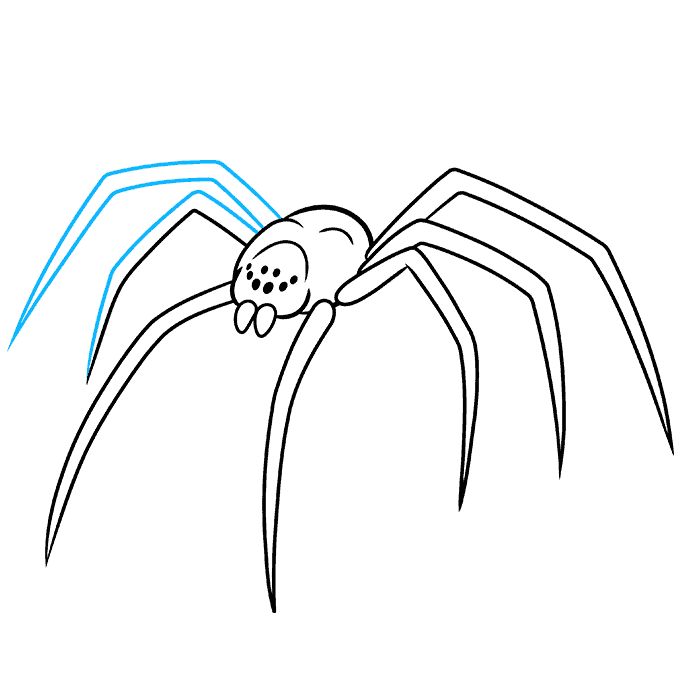 How to Draw a Black Widow Spider Step 07