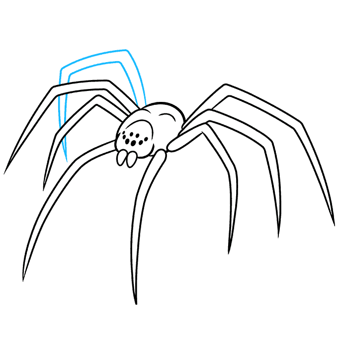 How to Draw a Black Widow Spider Step 08