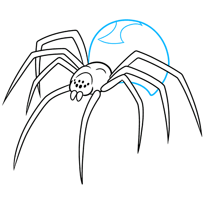 How to Draw a Black Widow Spider Step 09