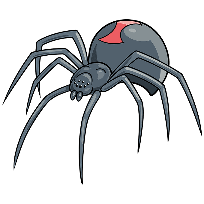 How to Draw a Black Widow Spider Step 10