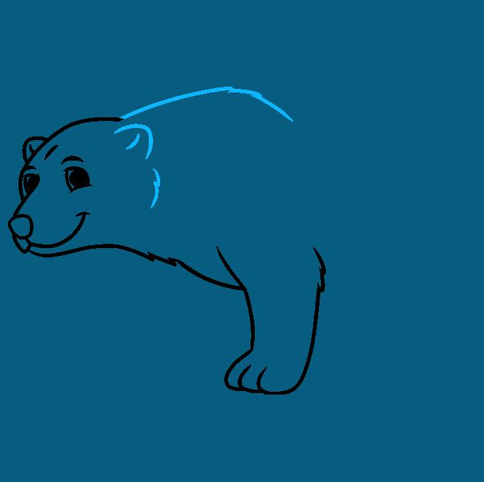How to Draw a Cartoon Polar Bear Step 05