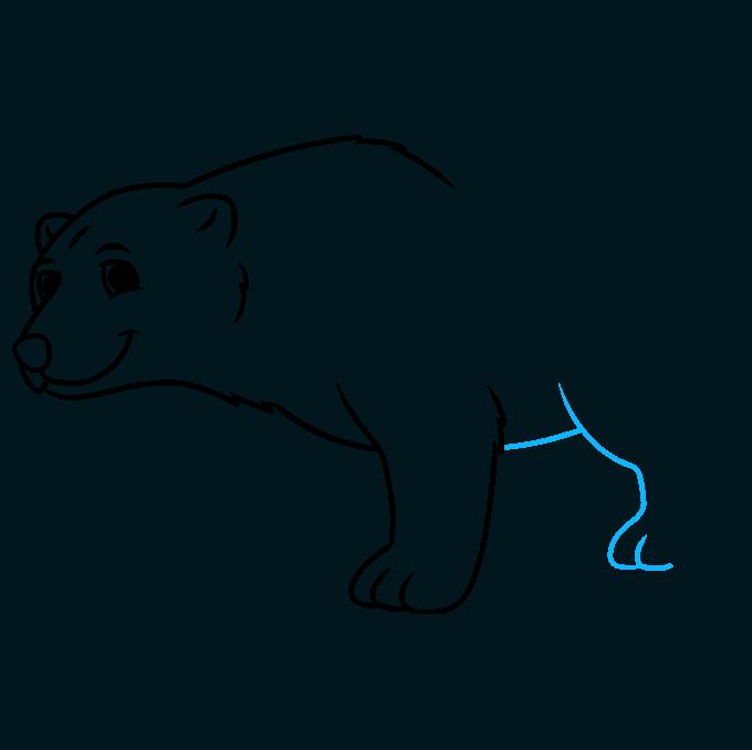 How to Draw a Cartoon Polar Bear Step 06