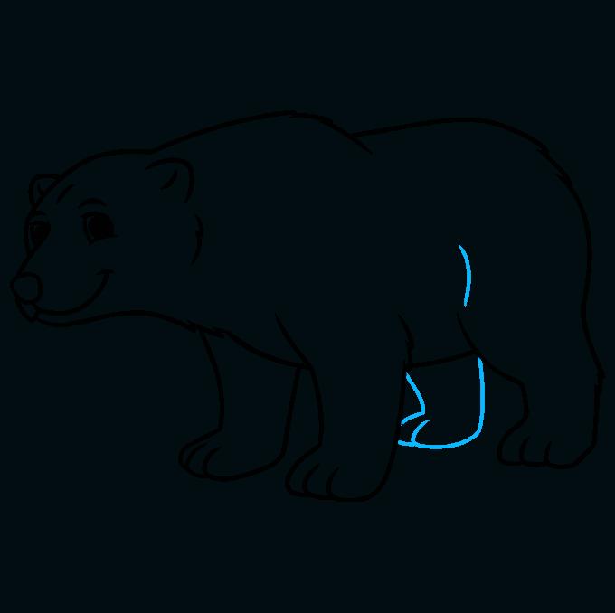 How to Draw a Cartoon Polar Bear Step 09