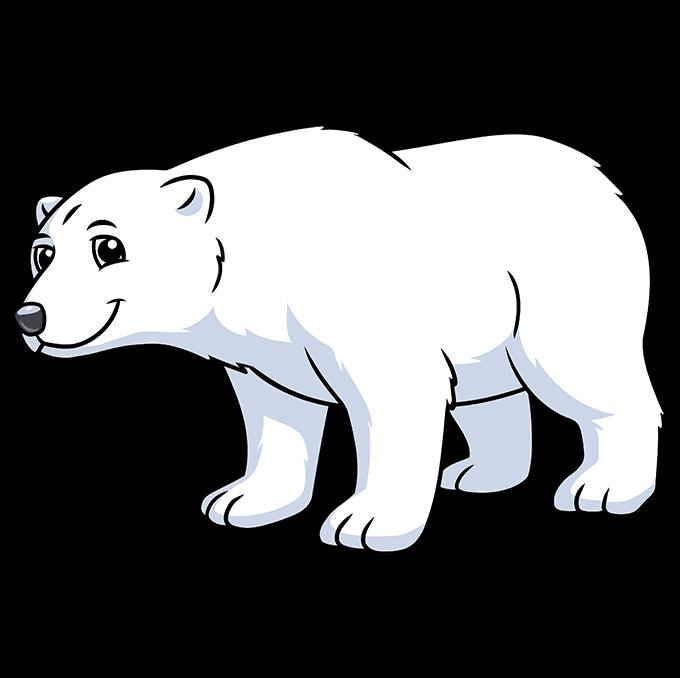 How to Draw a Cartoon Polar Bear Step 10