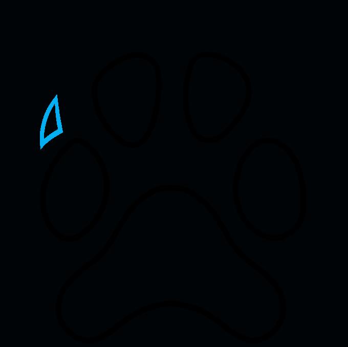 How to Draw Dog Paw Print: Step 6
