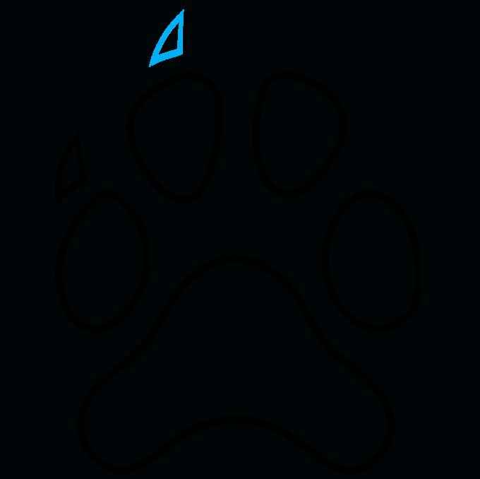 How to Draw Dog Paw Print: Step 7