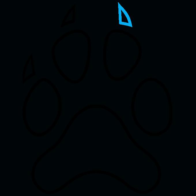 How to Draw Dog Paw Print: Step 8