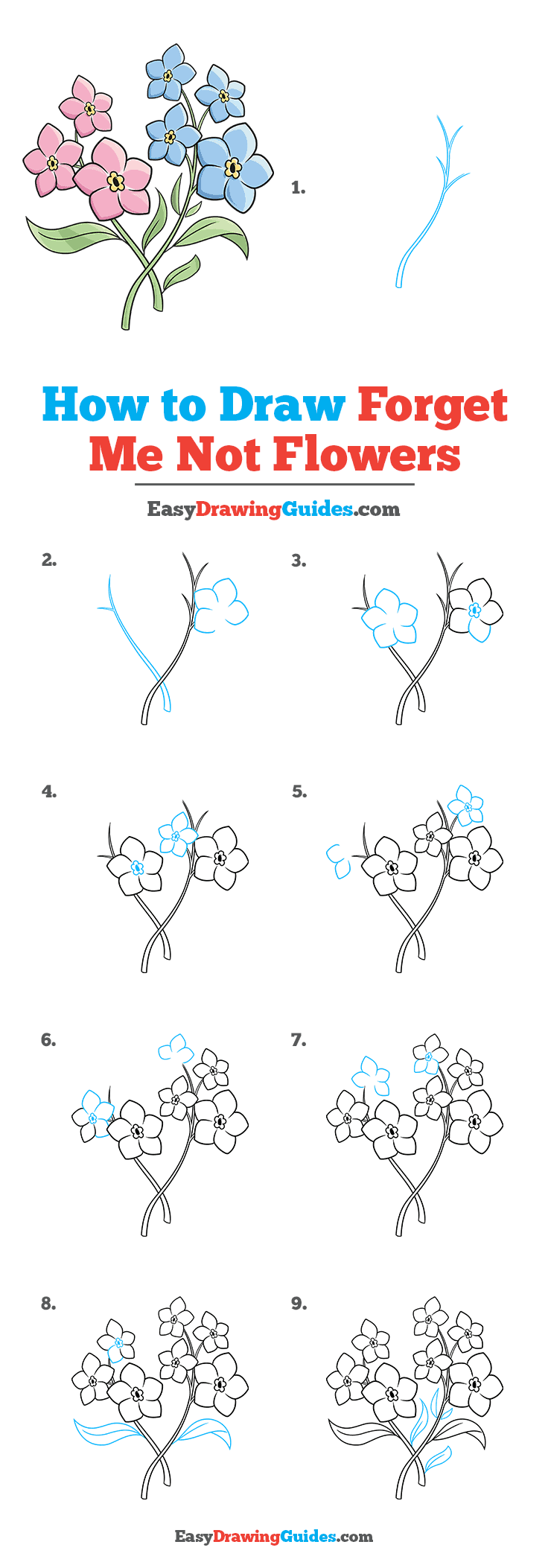 How to Draw Foget Me Not Flowers Step by Step Tutorial Image