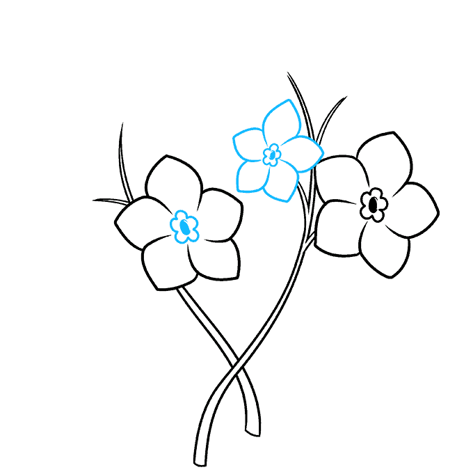 How to Draw Foget Me Not Flowers Step 04