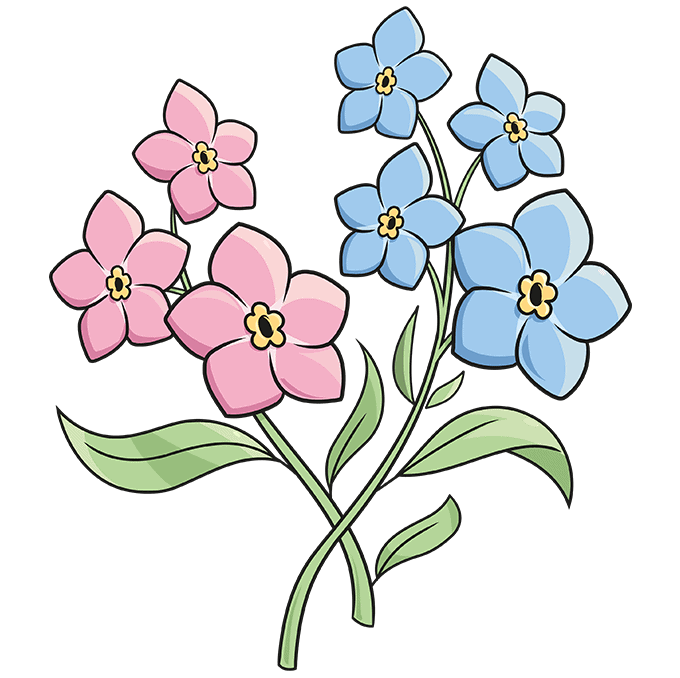 How to Draw Foget Me Not Flowers Step 10
