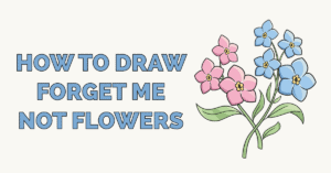 How to Draw Foget Me Not Flowers Featured Image