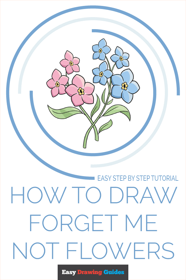 How to Draw Foget Me Not Flowers Pinterest Image
