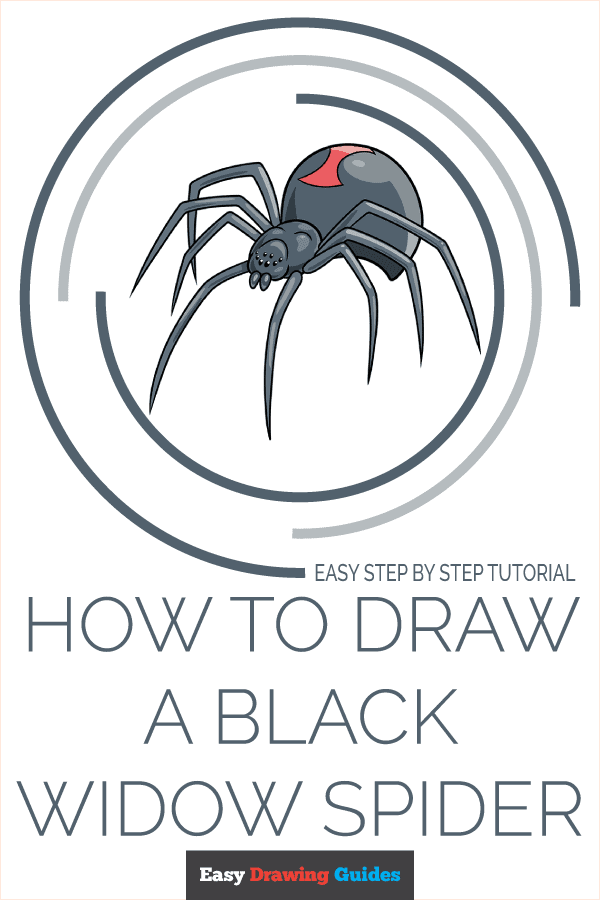 How to Draw a Black Widow Spider Pinterest Image