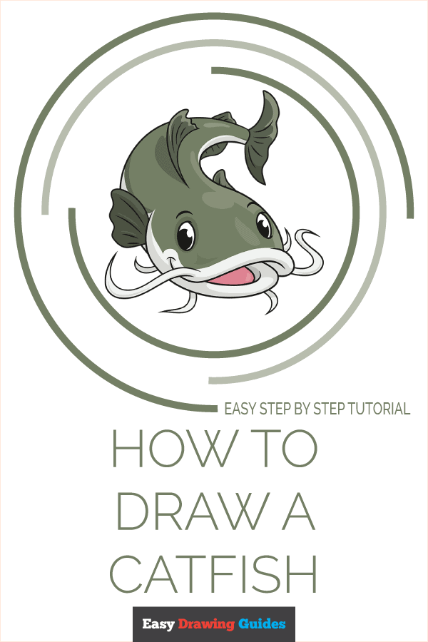 How to Draw a Catfish Pinterest Image