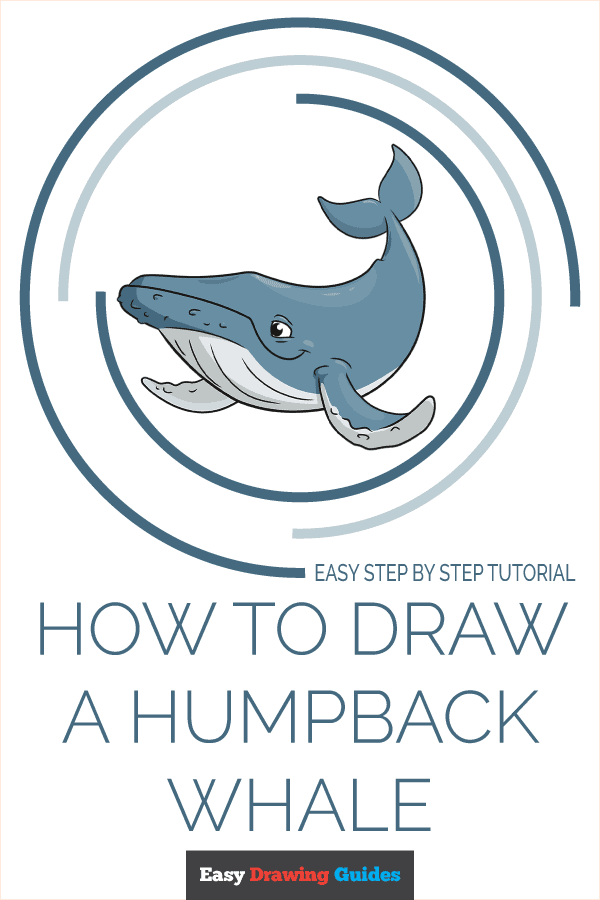 How to Draw a Humpback Whale Pinterest Image