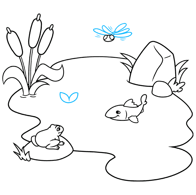 How to Draw a Pond Step 07