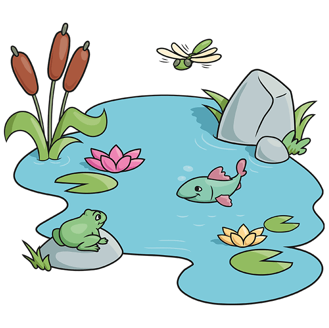 How to Draw a Pond Step 10