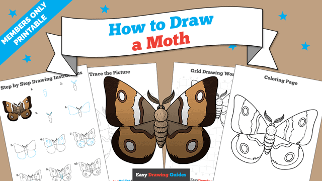 download a printable PDF of Moth drawing tutorial