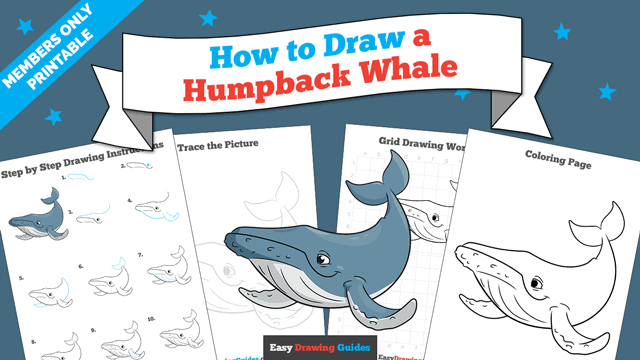 Printables thumbnail: How to Draw a Humpback Whale