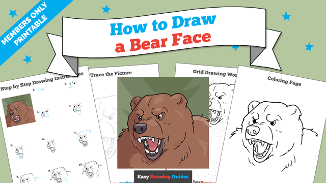 Printables thumbnail: How to Draw a Bear Face