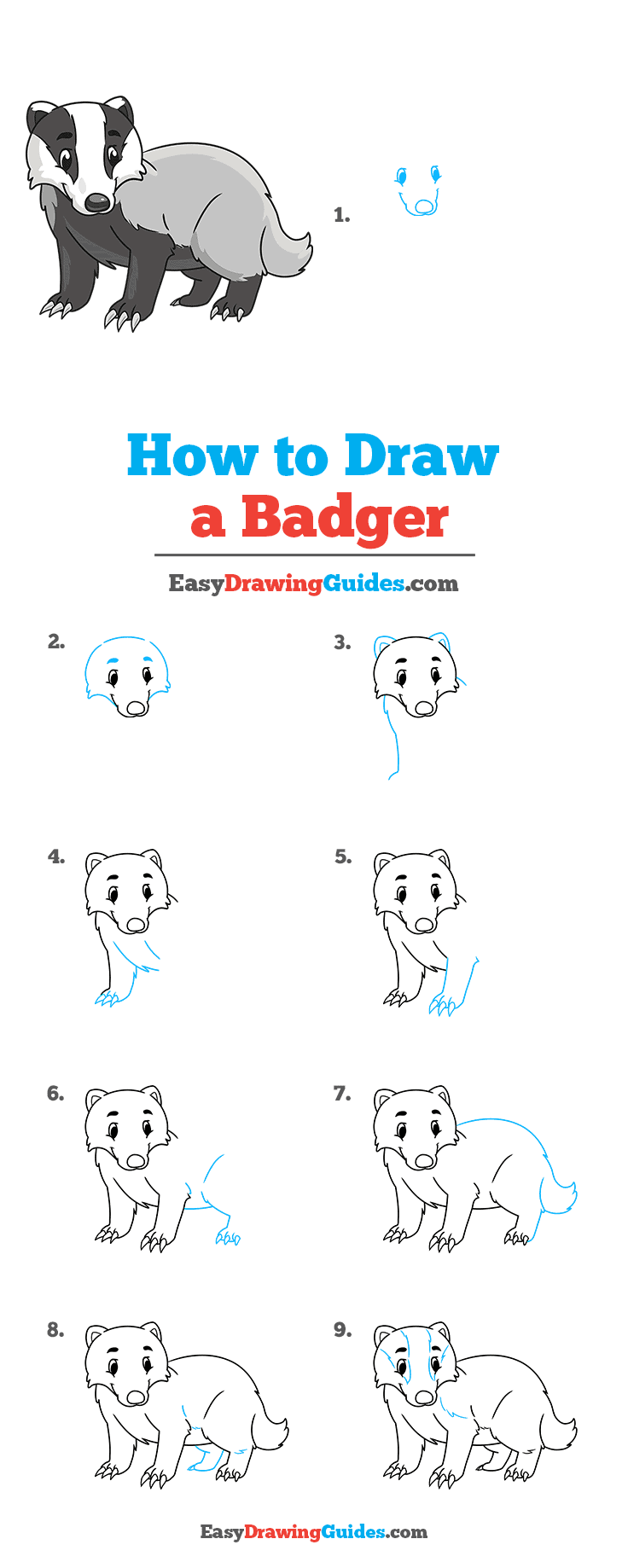 How to Draw a Badger Step by Step Tutorial Image