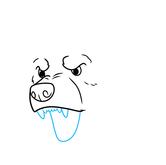 How to Draw a Bear Face Step 04