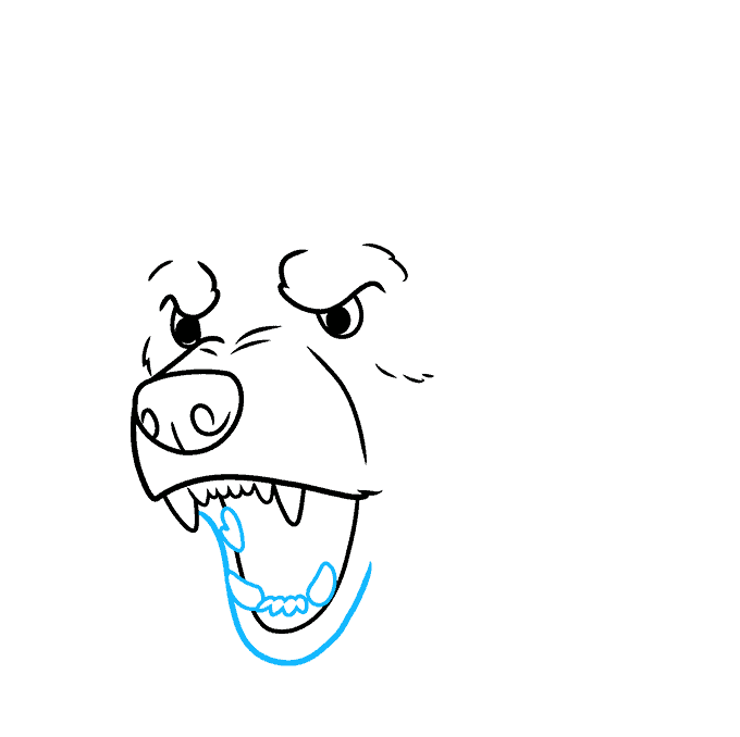 How to Draw a Bear Face Step 05