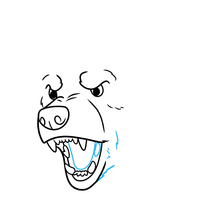 How to Draw a Bear Face Step 06