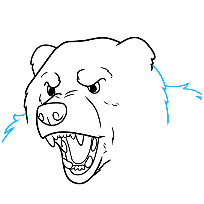 How to Draw a Bear Face Step 08