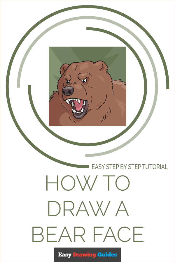 How to Draw a Bear Face Pinterest Image