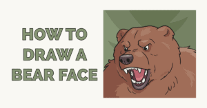 How to Draw a Bear Face Featured Image
