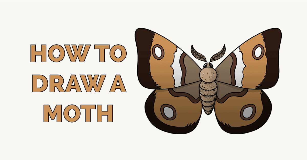 How to Draw a Moth Featured Image