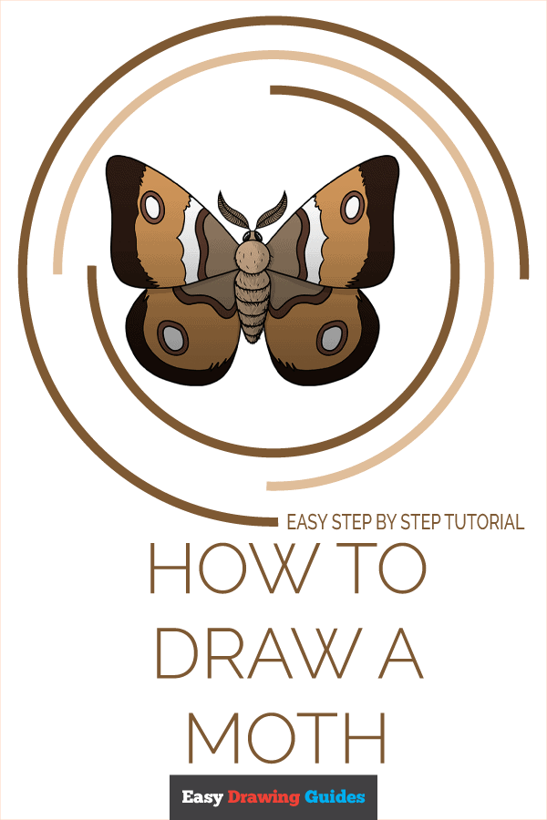 How to Draw a Moth Pinterest Image