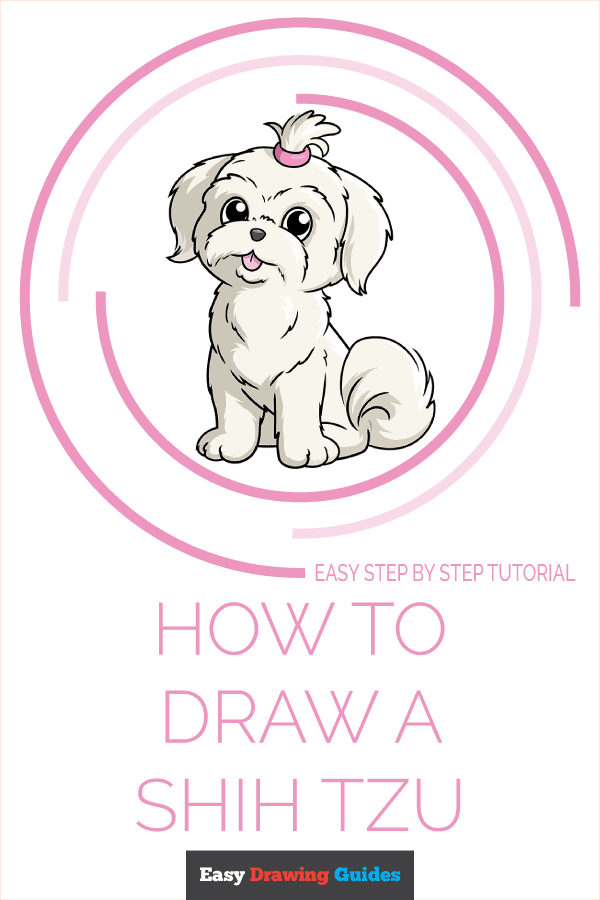 How to Draw a Shih Tzu Pinterest Image