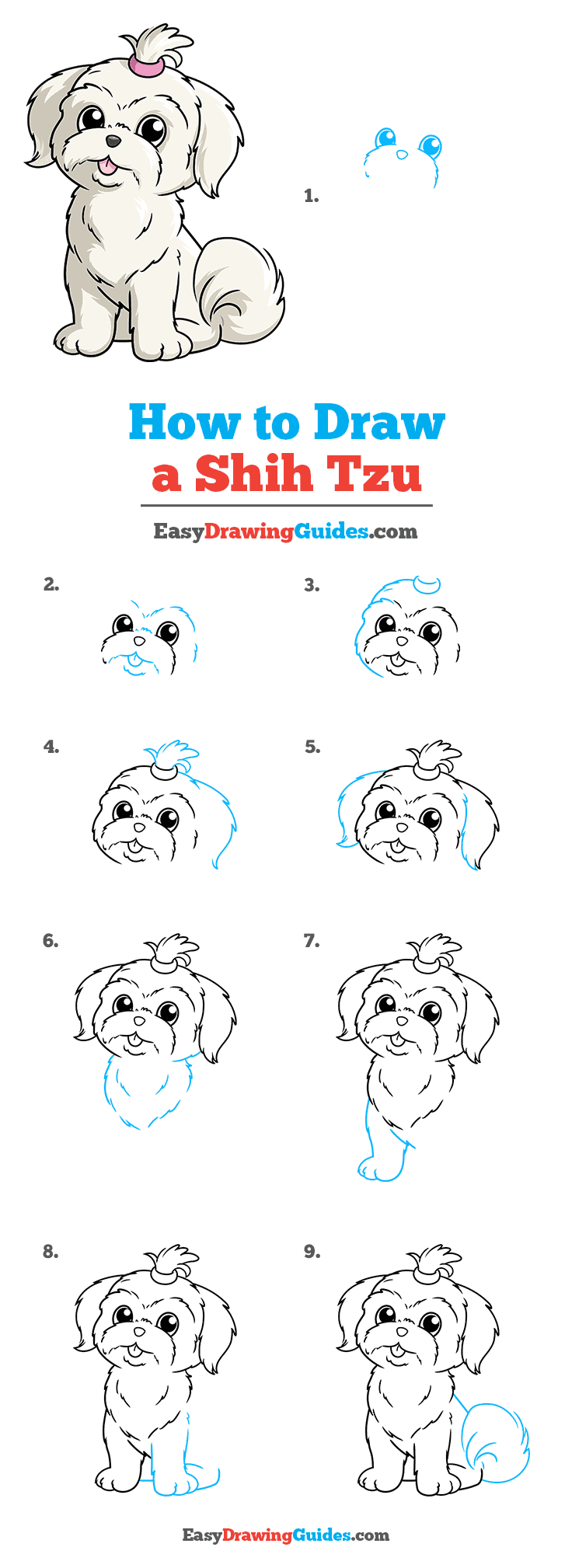 How to Draw a Shih Tzu Step by Step Tutorial Image