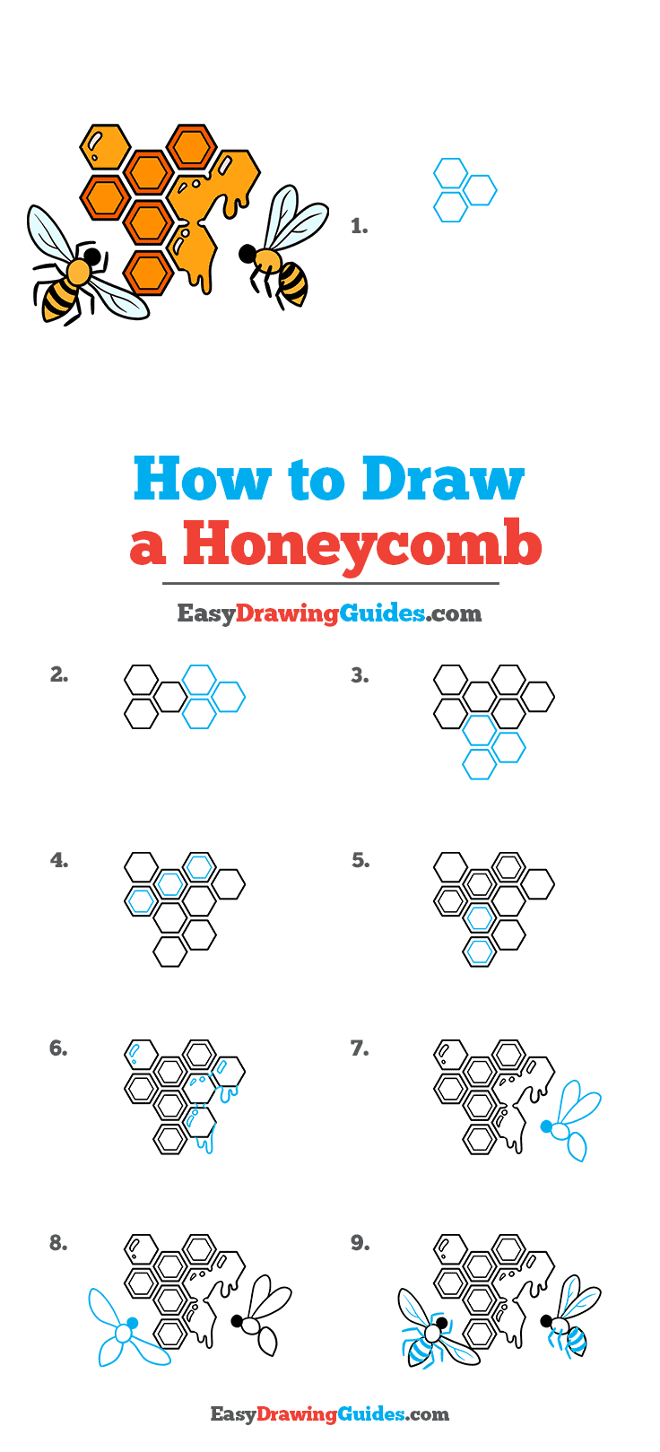 How to Draw a Honeycomb Step by Step Tutorial Image