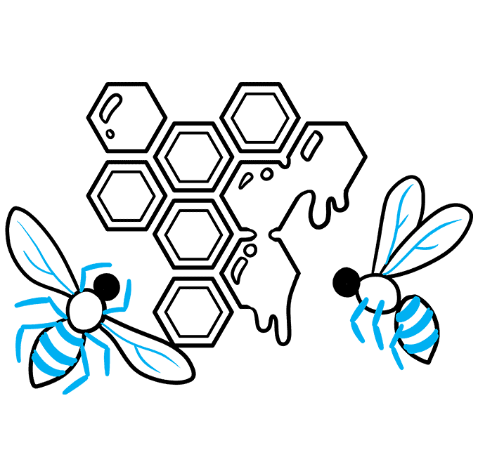 How to Draw a Honeycomb Step 09