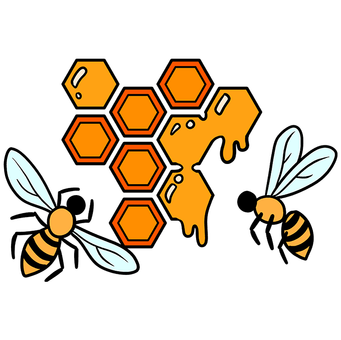 How to Draw a Honeycomb Step 10