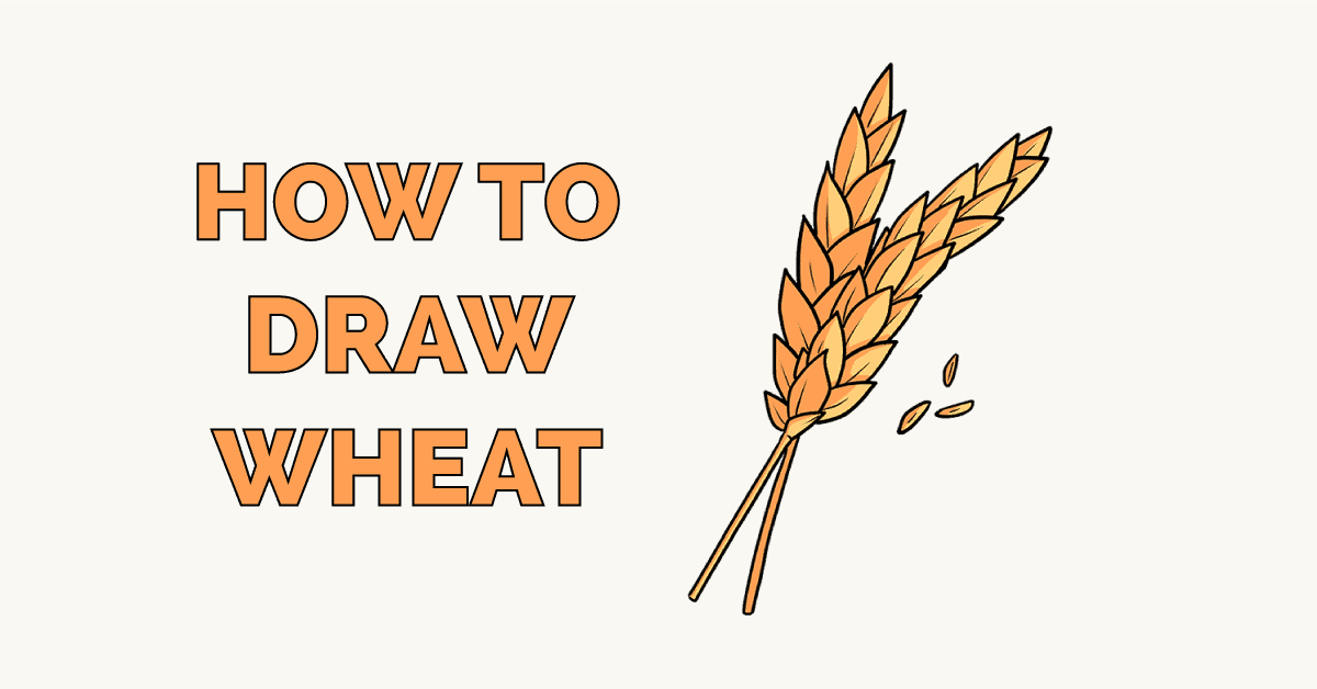 How to Draw Wheat Featured Image