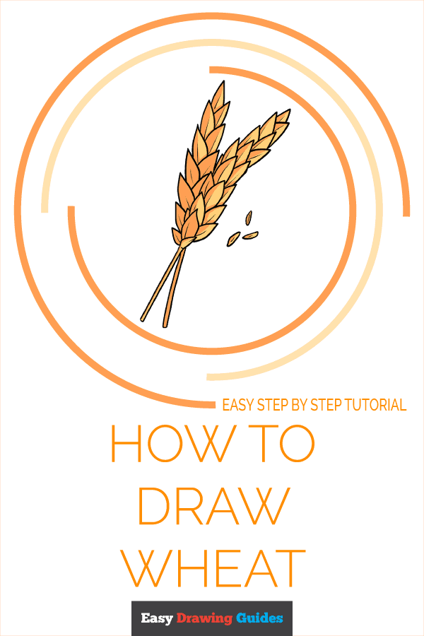 How to Draw Wheat Pinterest Image