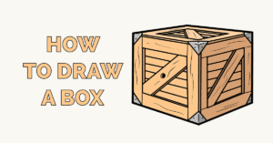 How to Draw a Box Featured Image