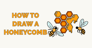 How to Draw a Honeycomb Featured Image