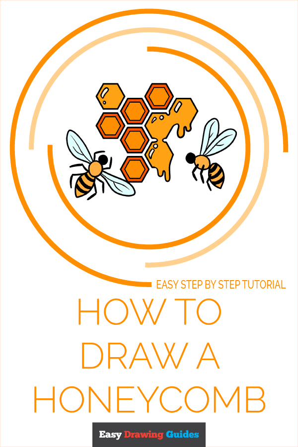How to Draw a Honeycomb Pinterest Image