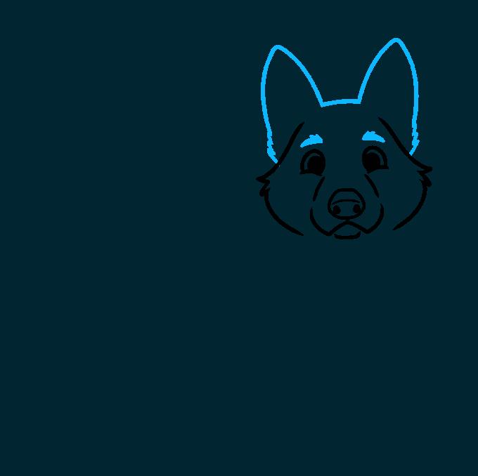 How to Draw a Cute German Shepherd Dog Step 03