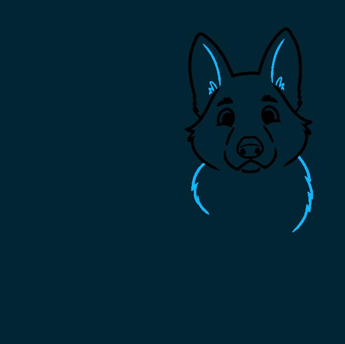 How to Draw a Cute German Shepherd Dog Step 04