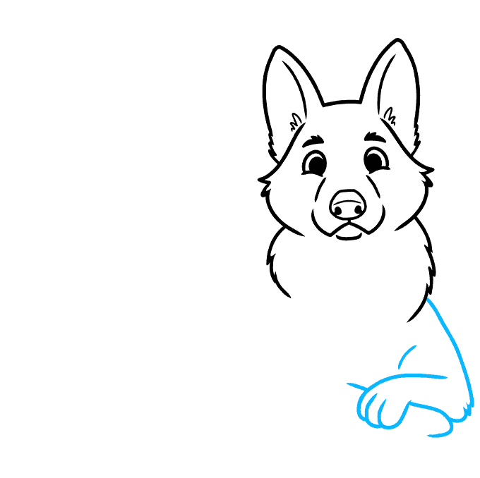 How to Draw a Cute German Shepherd Dog Step 05