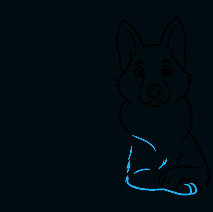 How to Draw a Cute German Shepherd Dog Step 06