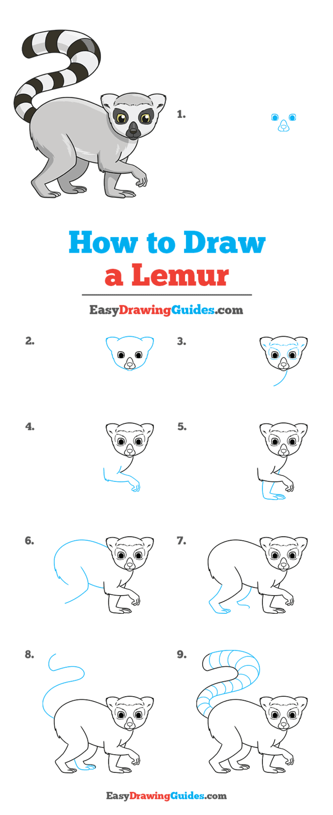 how to draw a lemur step by step tutorial image